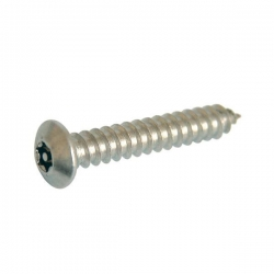 """No. 6 x 1"""" 1/4 (3.5 x 32mm) Button Self Tapping Screw Resistorx Stainless Steel (A2 304) TX-10H"""